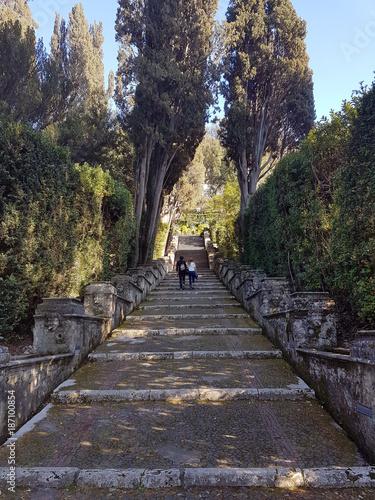 Foto op Plexiglas Weg in bos stone stairs in the gardens of the Roman villa
