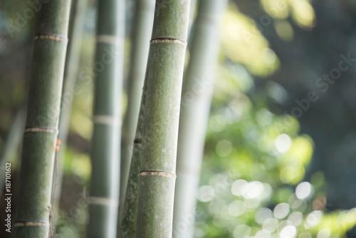 Aluminium Bamboe bamboo