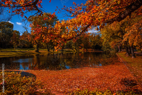 Foto Murales Weimarhallenpark mit buntem Laub im Herbst