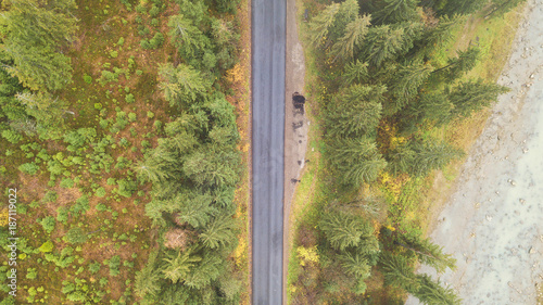 Aerial view of road in the middle of the mountains, on which pine trees grow