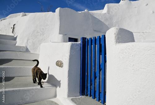 weisse Steintreppe mit Katze und blauer Holztür auf Santorin mit Himmel