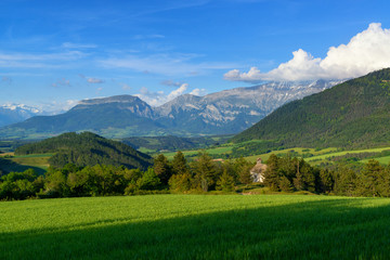 Green meadow and mountains. Rural landscape.