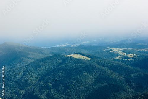 Foto op Canvas Nachtblauw Beautiful forest landscape in the Carpathians, Ukraine