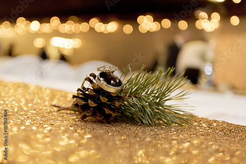 Jewelry on top of a pine cone with sparking decor