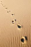 traces de pas dans le sable - 187179848