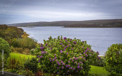 Foto Murales Küstenlandschaft bei Clifden, Connemara, Co Galway