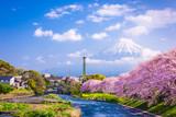 Mt. Fuji in Spring - 187200004