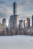 Sheep Meadow in the Winter, NYC - 187212616