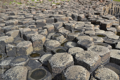 Foto op Canvas Stenen the giant causeway