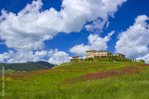 Deurstickers Toscane Tuscany - landscape with spring flowers