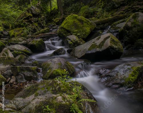 Foto Murales wasserfall
