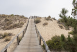 Huelva, Andalusia, Spain. Wooden walkway that crosses the natural park of Los Enebrales, near the park of Doñana. - 187236428