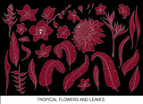 Tropical leaves and flowers silhouette set. Isolated on black background