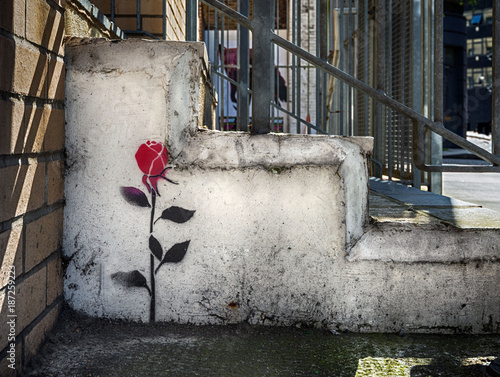 Single rose stencil graffitti on wall in London - 187259223