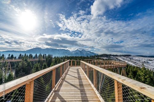 Foto Murales Mountain walk timber footpath sky trees winter sun bridge