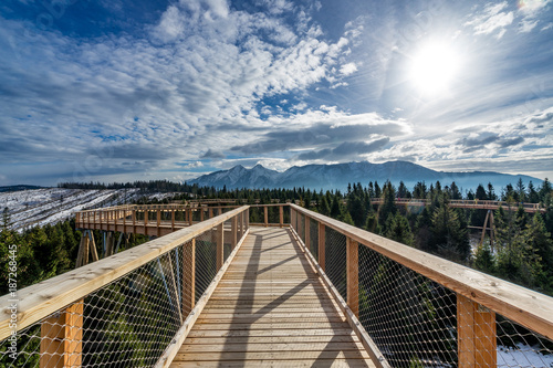 Mountain walk timber footpath sky trees winter sun bridge  - 187268445