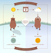 Happy Groundhog Day infographic flowchart style illustration with cute groundhogs.