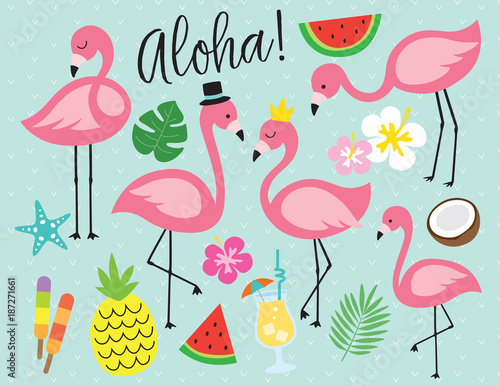 Cute flamingo with tropical summer vector illustration graphic elements such as pineapple, watermelon, hibiscus, coconut, pina colada, etc.