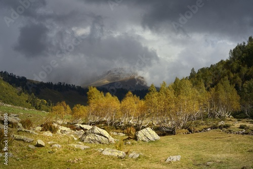 Fotobehang Herfst Autumn