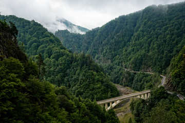 Green river valley in the Romanian Carpathians with a road and bridge