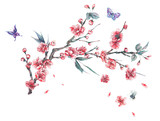 Watercolor spring pink blooming branches of cherry - 187304225