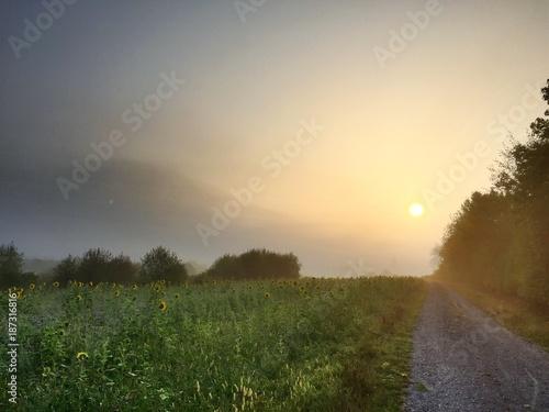 Keuken foto achterwand Ochtendgloren Sonnenaufgang in ländlicher Gegend mit Feldweg bei Pfedelbach