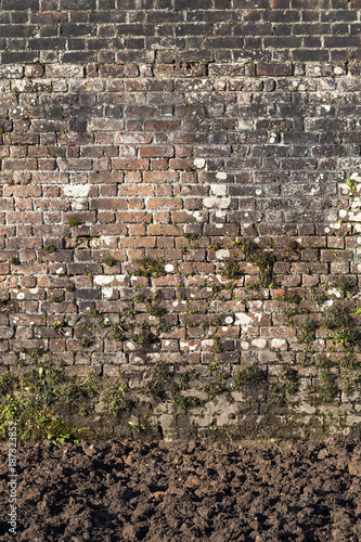 In de dag Baksteen muur Old large weathered distressed red brick wall background