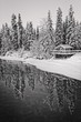 Black and white winter snow scene of cabin and snow covered trees reflecting in frozen river