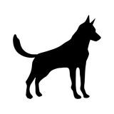 dog animal to chinese zodiac cartoon