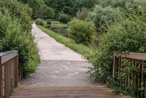Foto op Plexiglas Weg in bos Pateira de Fermentelos, Portugal