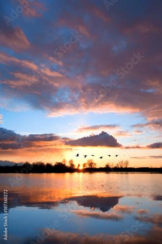 Waterfowl Sunset - 187360272