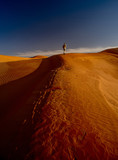 hike on the sand dunes of the sahara - 187372229