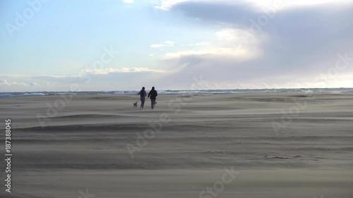 deux personnes et deux chiens courent sur une plage en plein vent