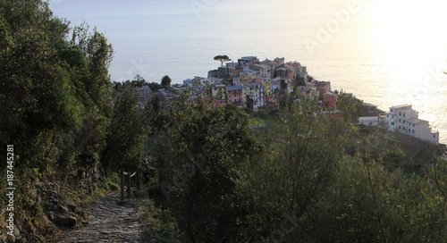 Foto op Plexiglas Liguria sentier ligure, Cinque Terre, Italie