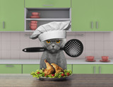 Cook cat holding a spoon