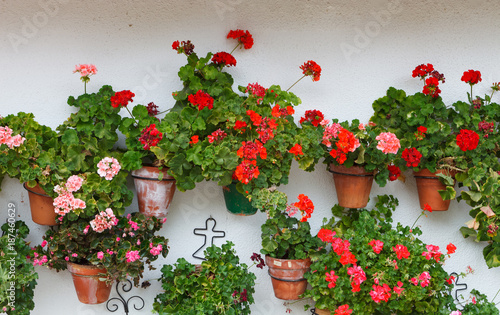 Foto Murales Beautiful house with with pots on their windows