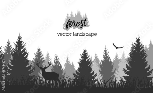 Aluminium Wit Vector vintage forest landscape with black and white silhouettes of trees and wild animals