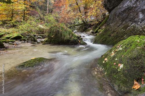 Papiers peints Rivière de la forêt Les Gorges de Covatannaz en automne