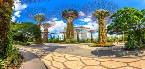 Panoramaaufnahme der Skyline von Singapur aus den Gardens by the Bay mit Supertrees fotografiert tagsüber bei Sonnenschein im Februar 2015