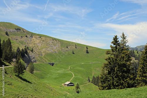 Deurstickers Blauwe hemel Swiss Alps Valley