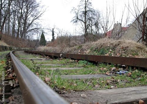 Foto op Plexiglas Weg in bos tory linii kolejowej