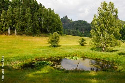Fotobehang Landschappen Summer landscape with forests, meadows, pond, rocks and sky