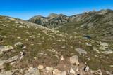 Amazing Summer landscape of green hills of Pirin Mountain, Bulgaria - 187548425