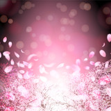 桜 春 花 背景 - 187561209