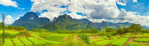 In de dag Lime groen Beautiful rural landscape.Vang Vieng, Laos. Panorama