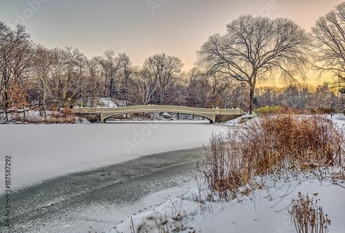Fotobehang Bruggen Bow bridge Central Park