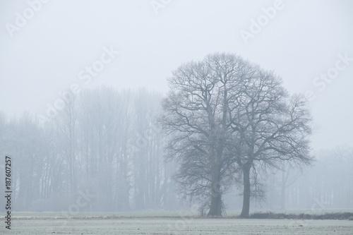 Wysokie miejsce we mgle
