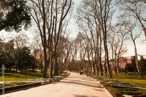 Foto Murales Winter in gulhane park, Oldest public park in istanbul