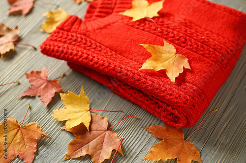 Autumn accessories knitted sweaters and leaves - 187615809