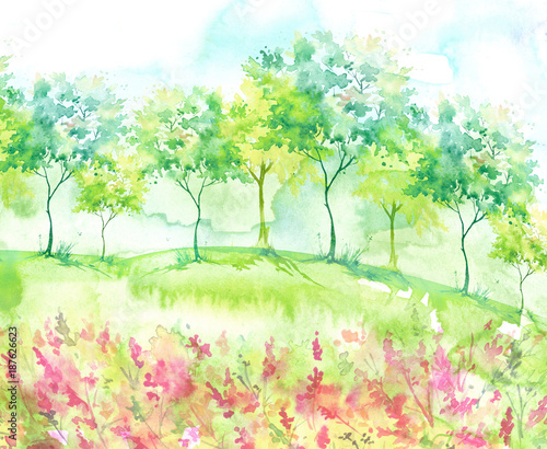 Beautiful watercolor postcard with wild flowers, pink, red plants. Watercolor background. Blossoming meadow, field, countryside landscape. Green Tree. Summer, Spring landscape. Silhouettes of forest. - 187626623